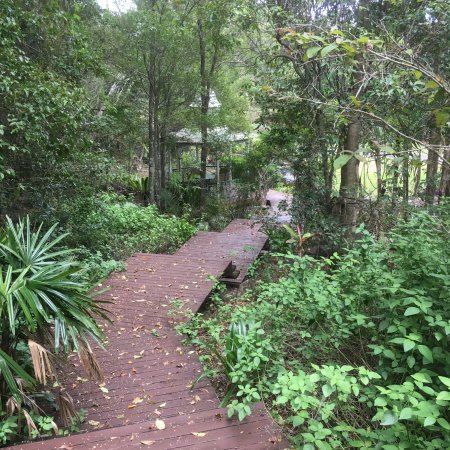 Cooroy Country Cottages: Beautiful walks on 95 acre property