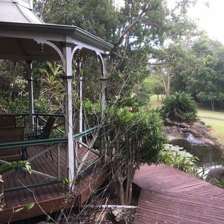 Cooroy, Australien: This is where I sat to read by a bubbly brook