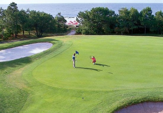 Marriott's Harbour Point and Sunset Pointe at Shelter Cove: Golf Course