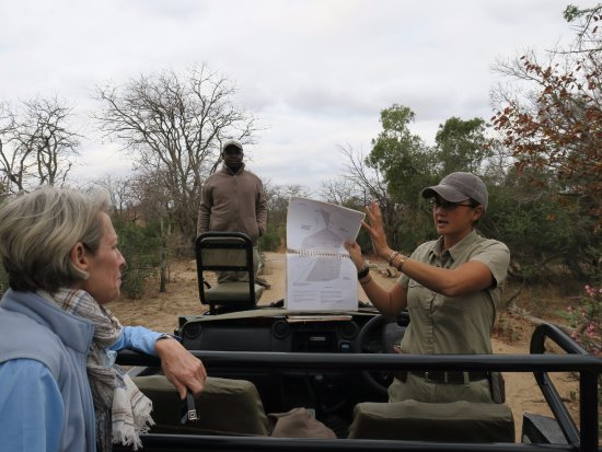 Ngala Private Game Reserve, Sør-Afrika: Planning our drive with our guide Jenny