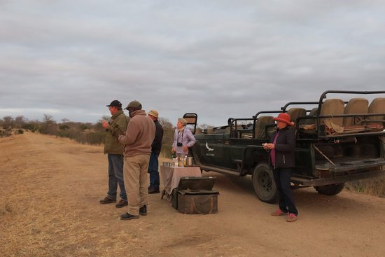 Ngala Private Game Reserve 이미지