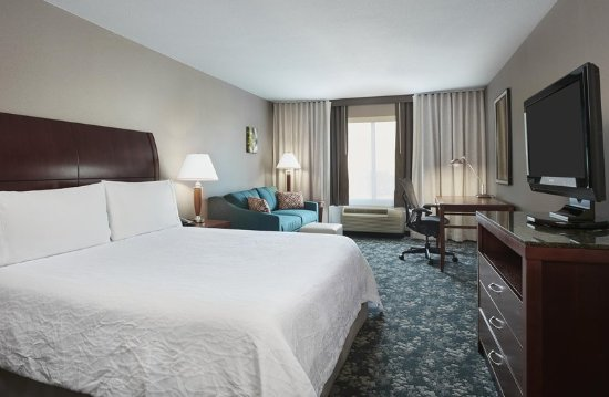 Hilton Garden Inn Schaumburg: King Sofabed Room