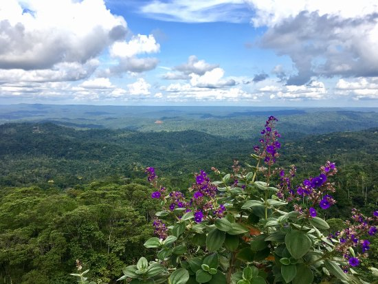 Pastaza Province
