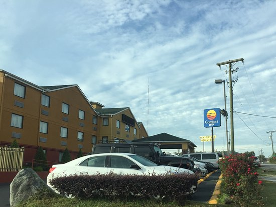 Comfort Inn Nashville/White Bridge Picture