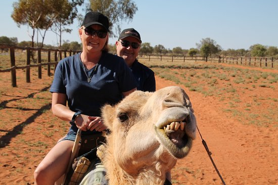 Camels Australia: the photographer said smile and we did even the camel did