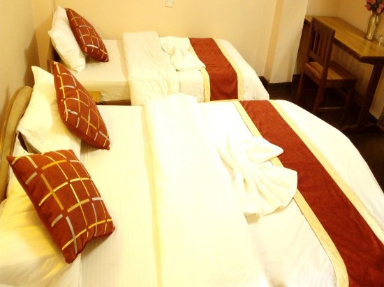 Festoon Hotel-bild