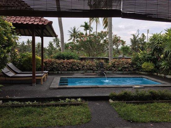 Bali Breeze Bungalows: photo4.jpg