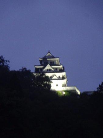 Gujo Hachiman Castle : 郡上八幡城