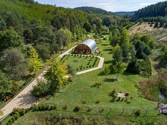 Ipolytarnoc, Magyarország: Miocén erdő