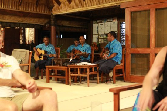 musicians playing and entertaining.