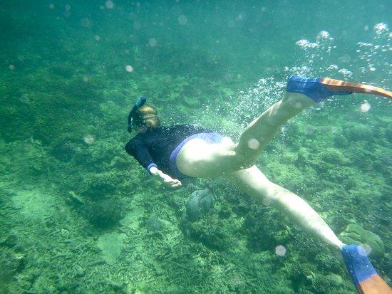 Toberua Island, Fiji: snorkelling