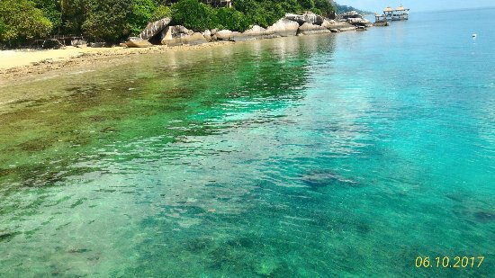Best Place To Snorkel On Tioman Island