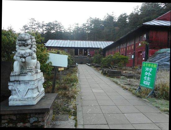 Emeishan, Cina: DSCN1173_large.jpg