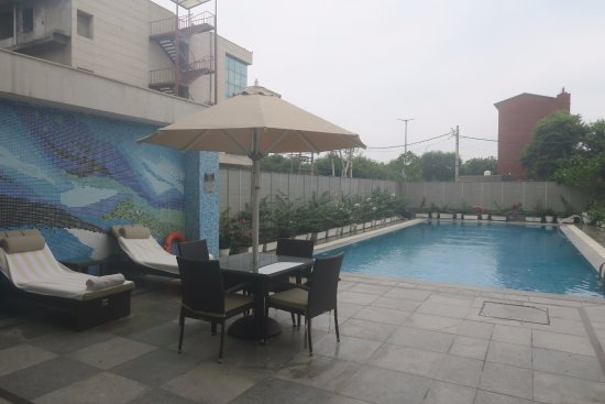 Swimming Pool Picture Of The Muse Sarovar Portico New