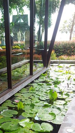 Nora Buri Resort & Spa: Tranquility pond beside the spa