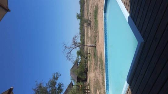 nThambo Tree Camp: TA_IMG_20171105_135824_large.jpg