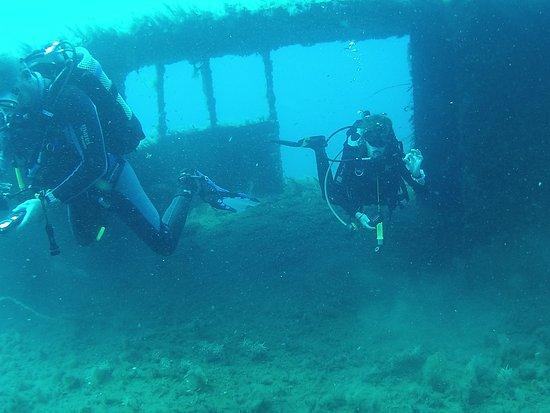 Malama Beach Holiday Village: Wracktauchgang in der Nähe, ca. 24 - 30m tief.