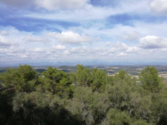 Petra, Spain: Blick nach Osten
