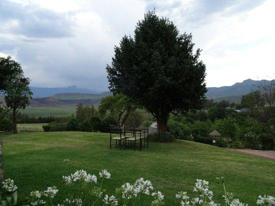 uKhahlamba-Drakensberg Park, Sydafrika: DSC07846_large.jpg
