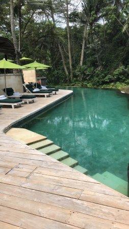Four Seasons Resort Bali at Sayan: photo0.jpg
