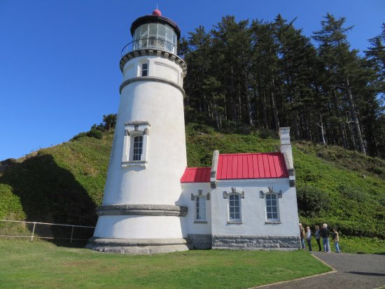 Heceta Head Lighthouse: Immaculate lighthouse with a number of volunteers to explain its history