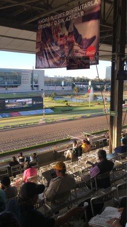 Hipodromo de las americas sportsbook betting research sports betting
