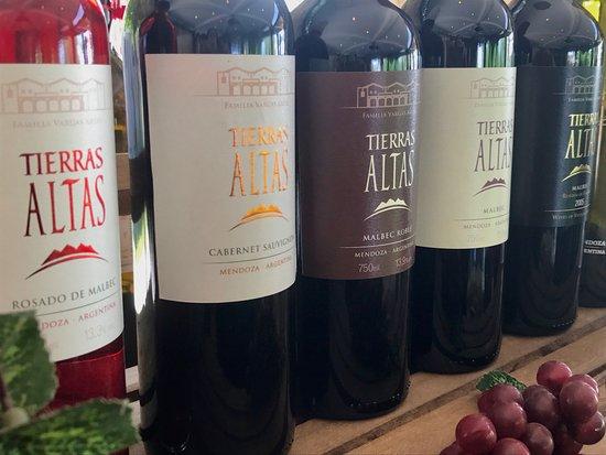 Lujan de Cuyo, Argentina: Tierras Altas wine