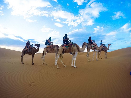 Hassilabied, Morocco: camel  treck