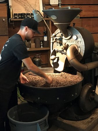 Panther Coffee Photo