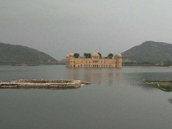 Jaipur Safar
