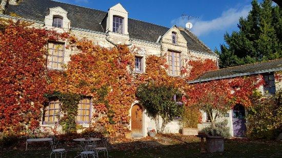 Vaudelnay, France: La Pinsonniere