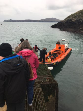 Voyages of Discovery (Ramsey Island): photo2.jpg