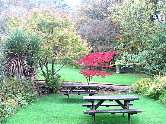 Kilmory, UK: Autumn at the Lagg Hotel