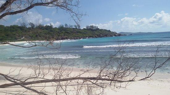 Anse Coco Beach: Anse Coco am frühen Vormittag