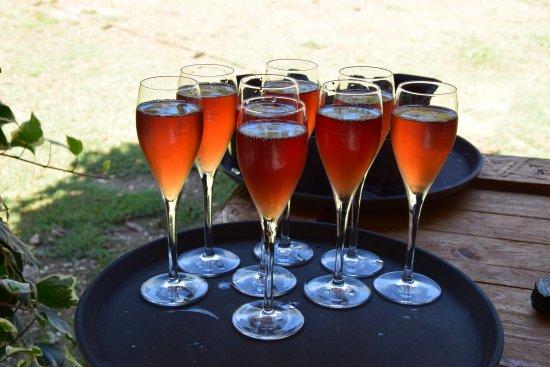Vilobi del Penedes, Spanien: Cava rosado de bienvenida