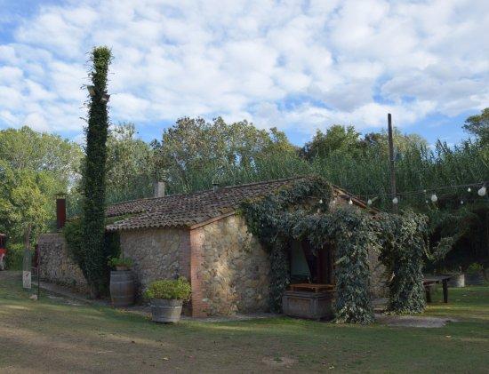 Vilobi del Penedes, Spanien: Entorno