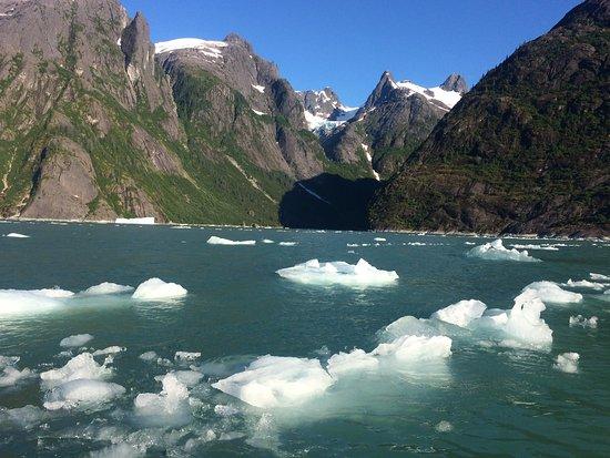 Wrangell, Аляска: LeConte Bay! WOW!
