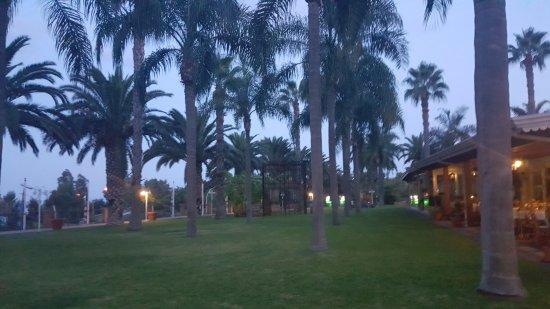Hotel Orizzonte - Acireale: Zona ajardinada