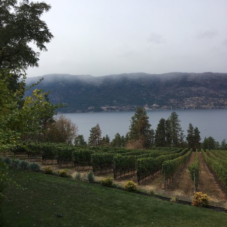 Arrowleaf Cellars & Arrowleaf Cellars (Lake Country) - 2018 All You Need to Know Before ...