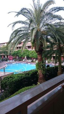 Rosen Inn at Pointe Orlando: DSC_2172_large.jpg