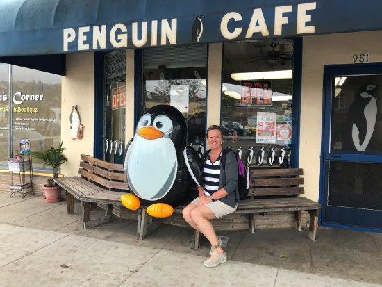 The Penguin Cafe Laguna Beach