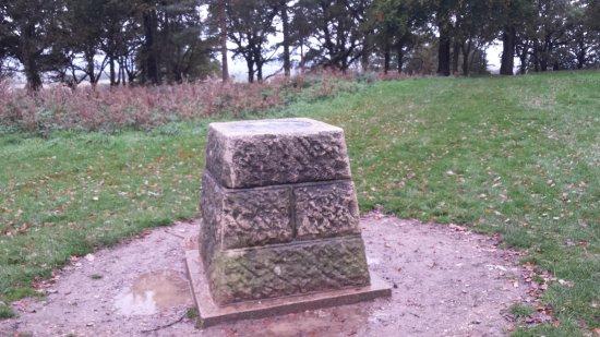 Wimborne Minster, UK: Marker stone