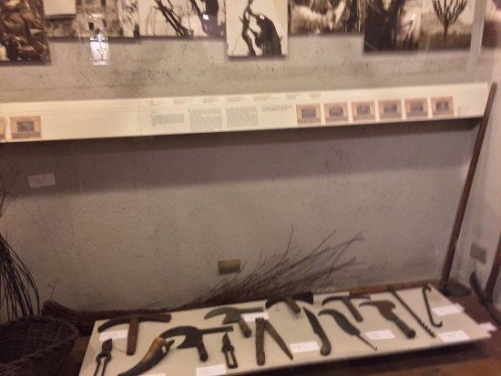 MUVIT Museo del Vino Torgiano Museum : photo1.jpg