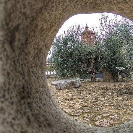 Museo de la Cultura del Olivo : Fotos Museo por Santiago Calvo.