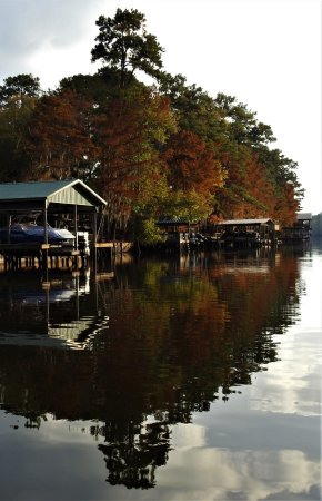 Captain Ron's Swamp Tours: Beautiful homes and reflection scenery.