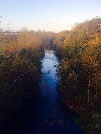 River Dodder: photo8.jpg