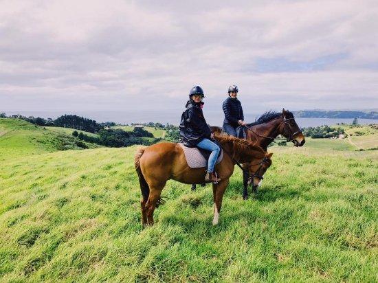 Isla Waiheke, Nueva Zelanda: Stunning views