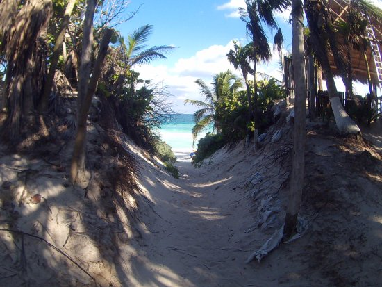 Yucatan Outdoors: path to beach