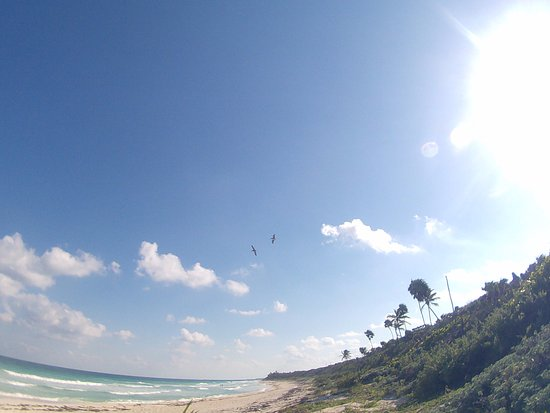 Yucatan Outdoors: beach view down the coast