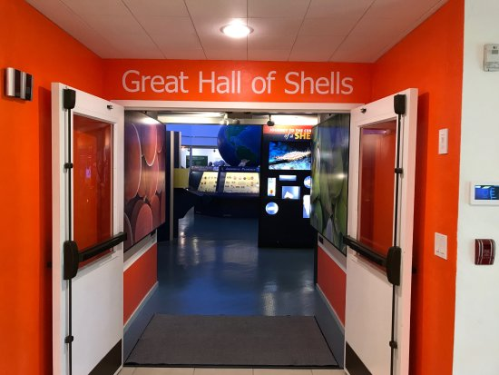 The Bailey-Matthews National Shell Museum: The entrance to the Great Hall of Shells